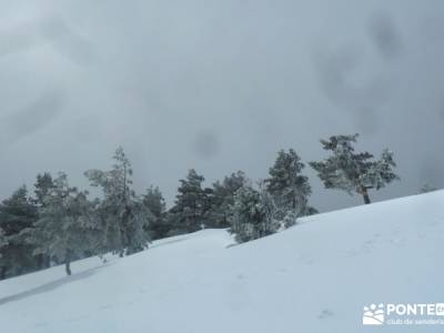 Raquetas de Nieve - Puerto de Cotos; senderismo trekking; montañismo; nieve madrid;turismo de sende
